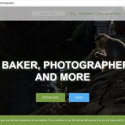 screen capture of https://daniel-baker.photography homepage