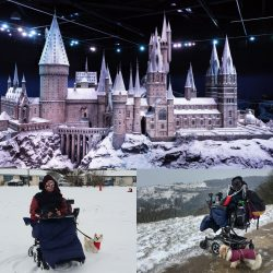 a collage of pictures, Hogwarts at Harry Potter World, Daniel Baker in the snow with his chihuahua Peppa, Daniel Baker looking out at the snow from Birdlip with his Cava-Tzu Mya