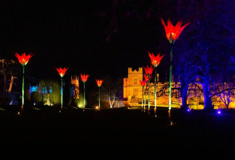 Giant Tulips making a pathway leading to the castle at the Sudley Castle Spectacle of Light