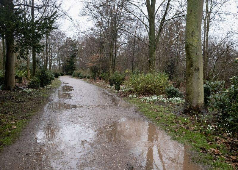 A wet and muddy woodland path in the rain at Croome