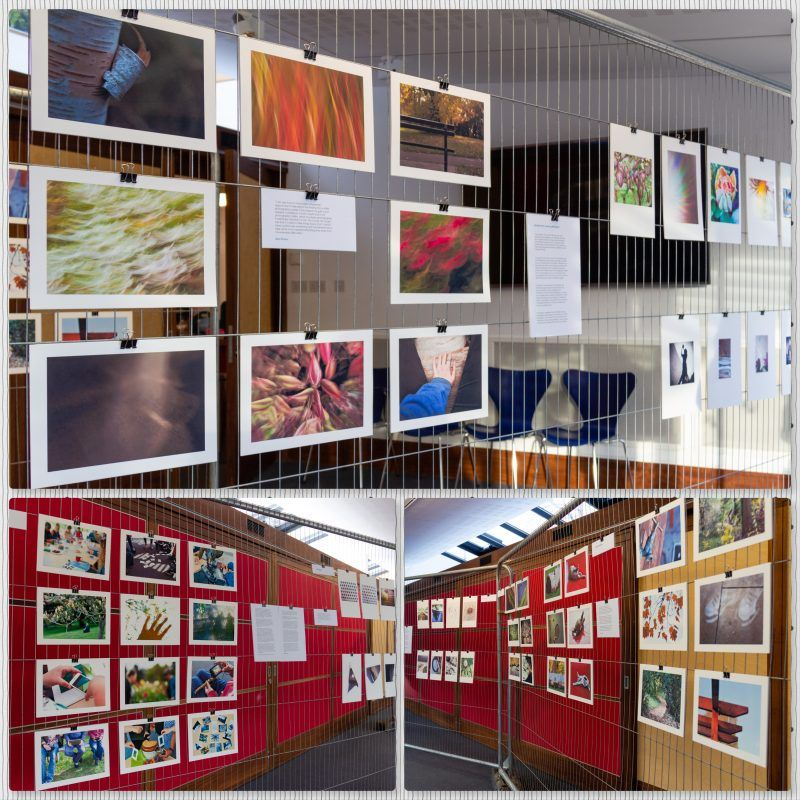 collage showing several photographs from the mindful photography exhibition