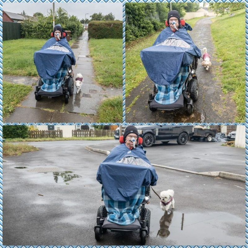 collage of Daniel Baker taking his three dogs, Kara, Mya and Peppa for a walk on a wet day
