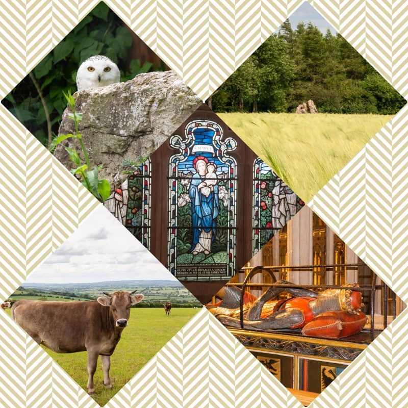 Collage in an X shape of photos from Gloucester Cathedral, Birdland and The Rollright Stones