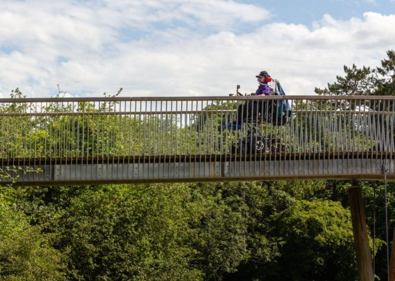Daniel Baker on a bridge amongst the treetops of westonbirt Arboretum