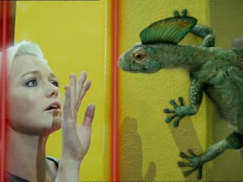Hannah Spearritt in Primeval