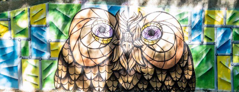 Owl Graffiti at Benhall park