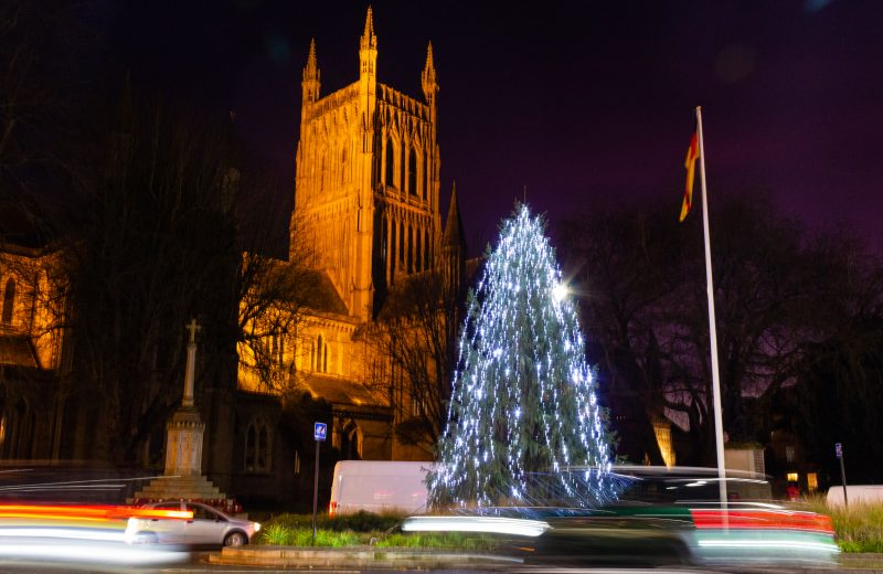 Christmas tree at night in front of Worcester Cathedral