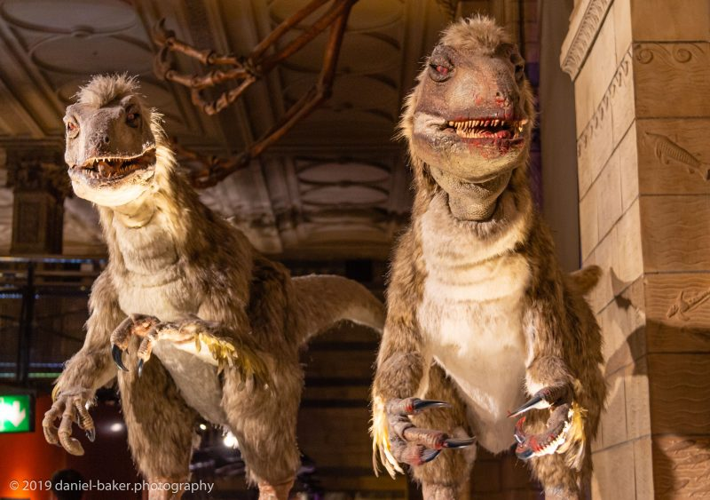 Animatronic Dinosaurs at the Natural History Museum London