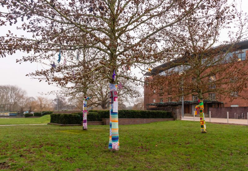 Trees with trunks wrapped in crochet at Stratford-upon-Avon