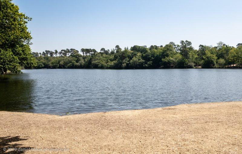 Lake in Black Park
