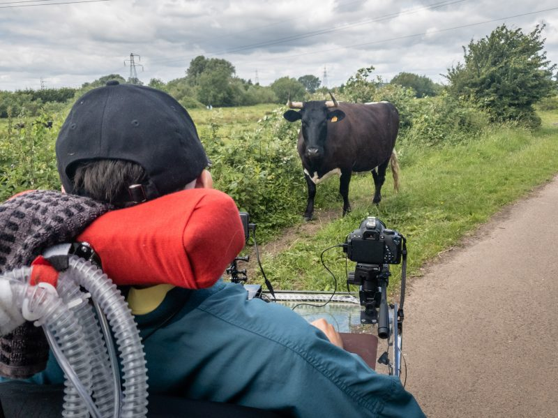 Daniel Baker on a path photographing a black cow
