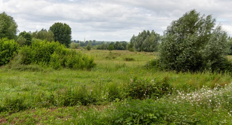A view across lush fields with a church spire in the distance