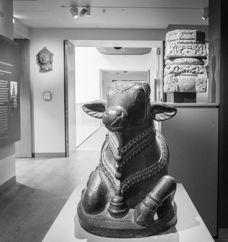 Statue of a bull in the Ashmolean museum in Oxford