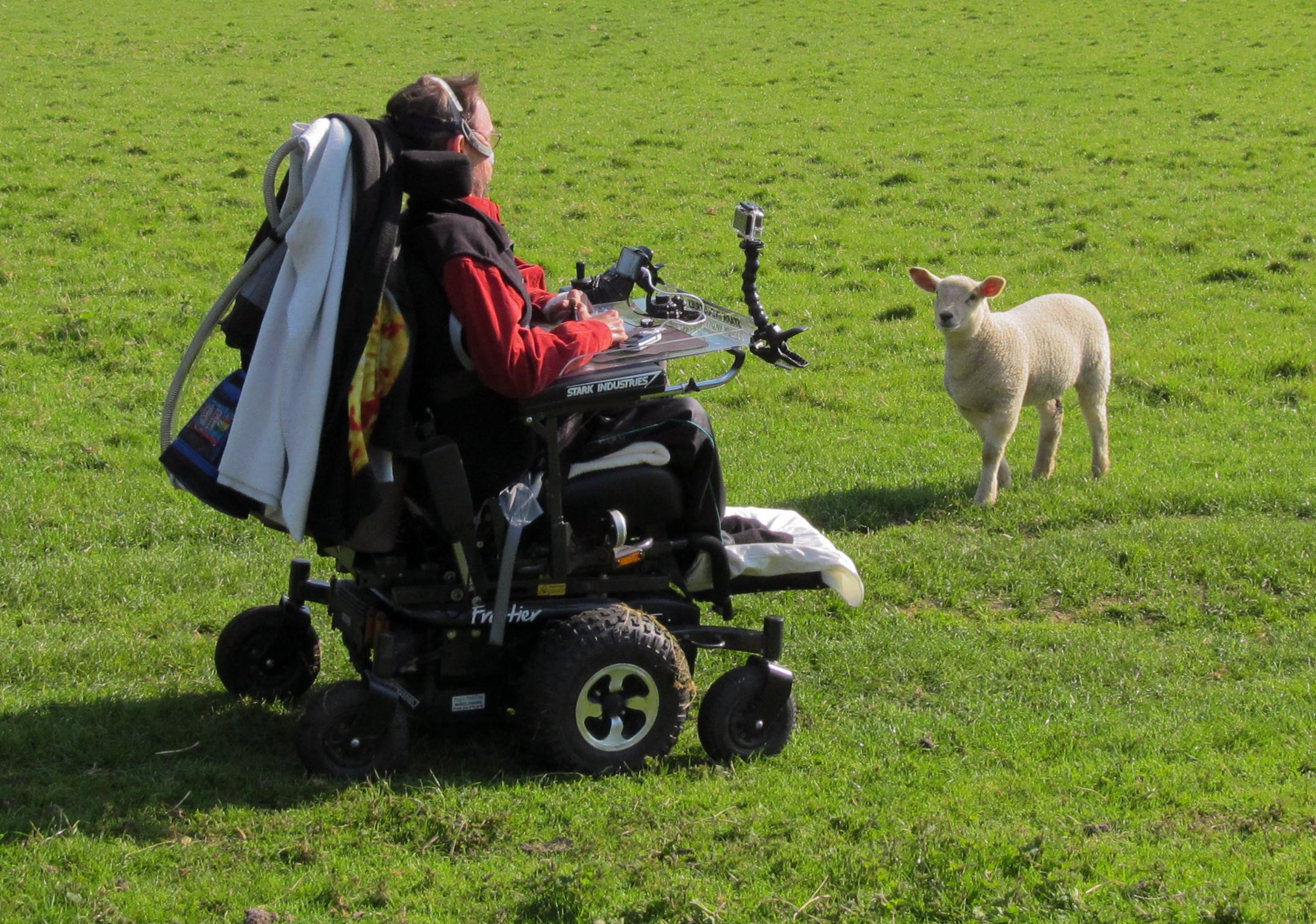 Daniel Baker in his wheelchair facing an interested lamb at a visit to April 18th 2014 visit to Sudeley Castle